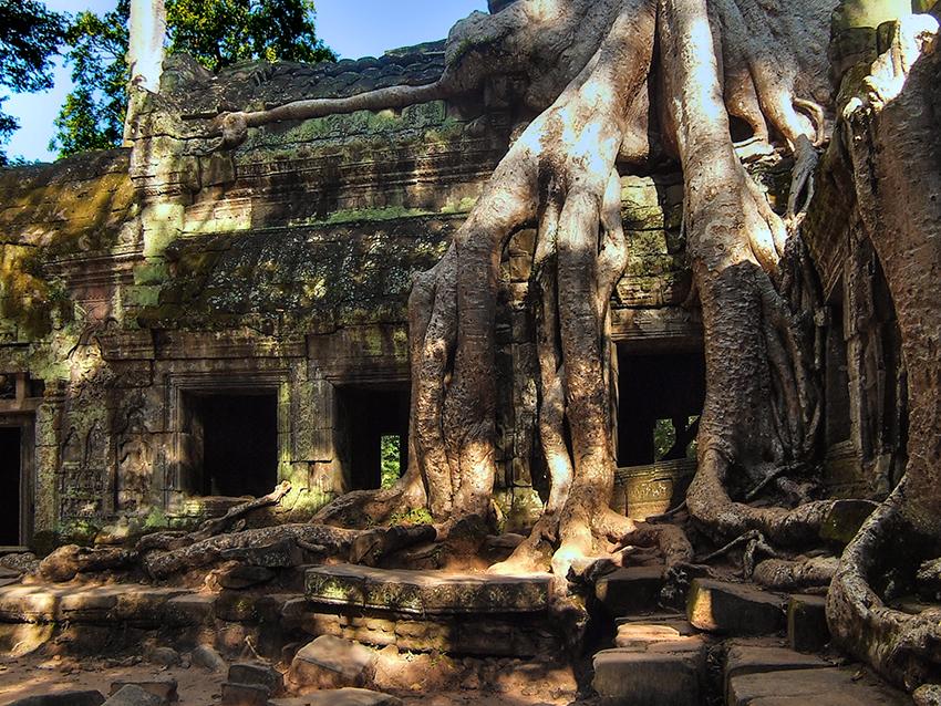 Kambodža s fotografem - Ta Phrom