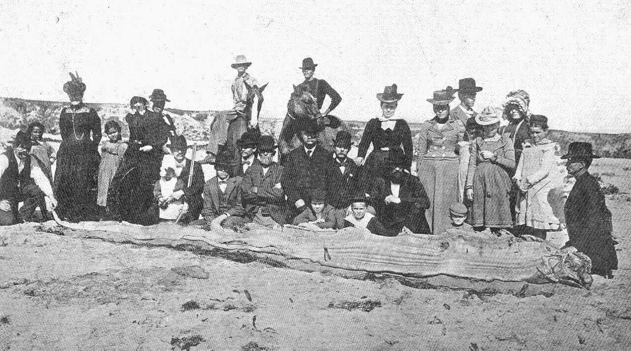 Newport, Orange County, Caifornia, 1907