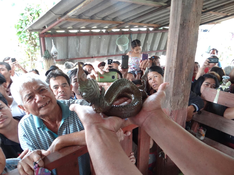 Davy uctívají tělo Nágy 'nalezené v provincii Roi Et 23. dubna 2015