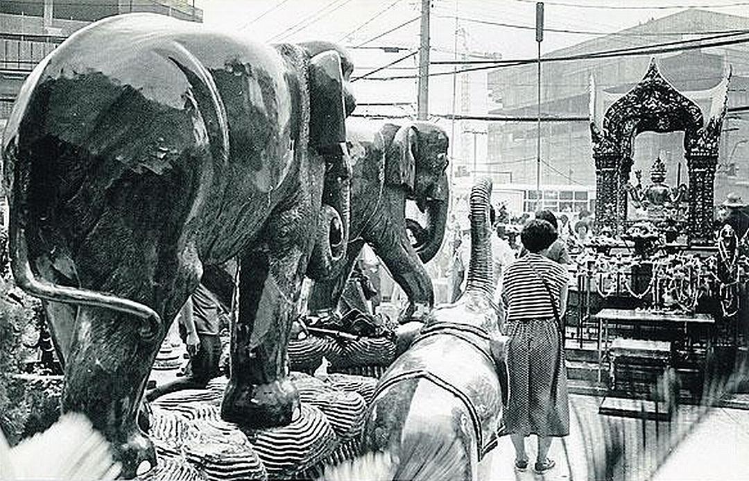 Tchajwanské ženy předávají obětinu - 4 velké dřevěné slony 1989.