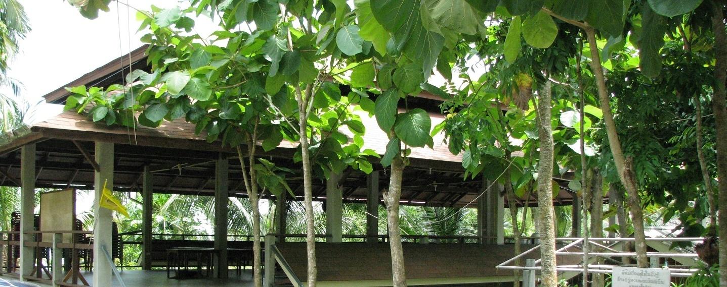 Jídelna - Wat Dipabhávan - Ko Samui - Thajsko