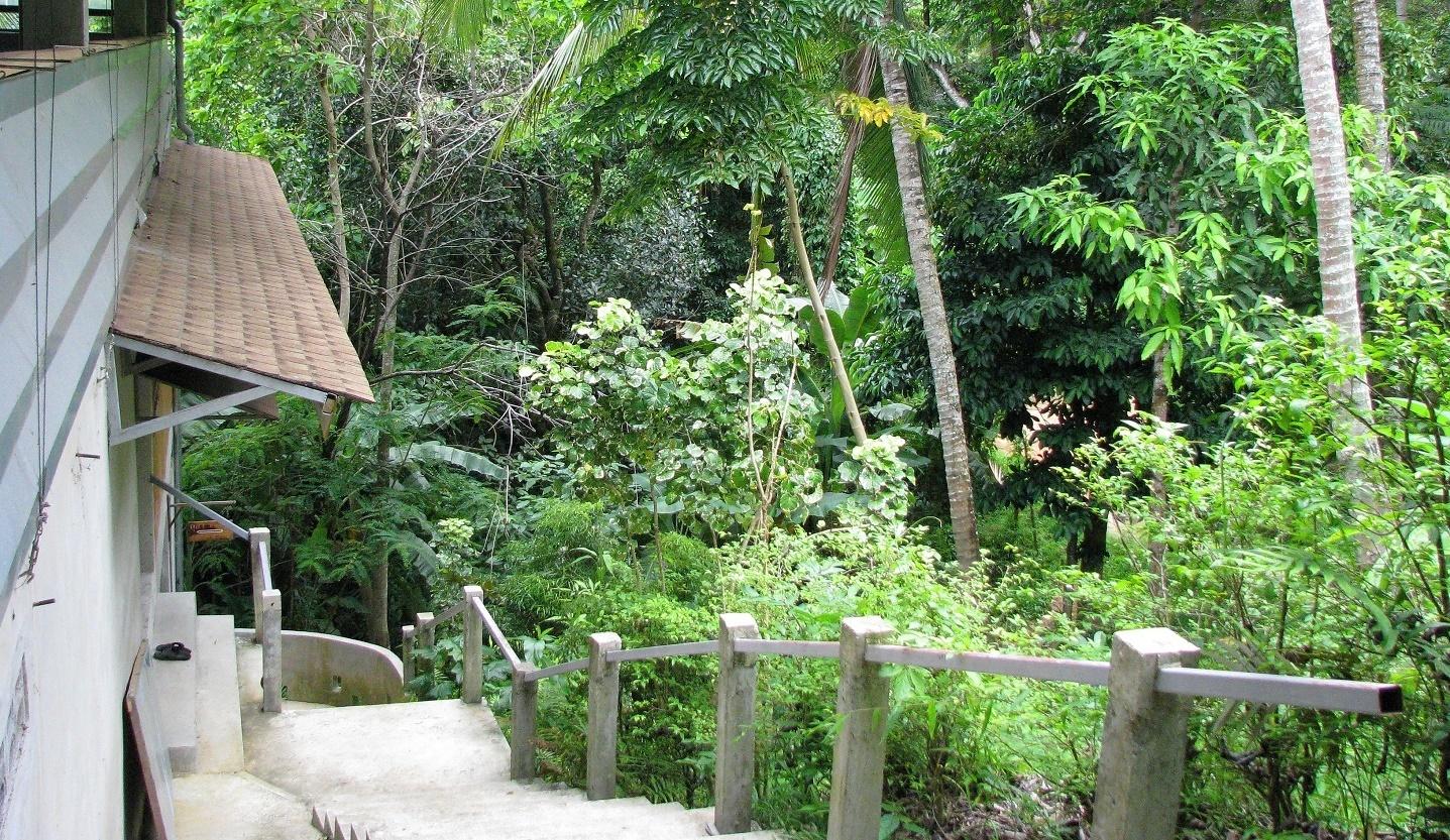 Schody do ubytovny - Wat Dipabhávan - Ko Samui - Thajsko