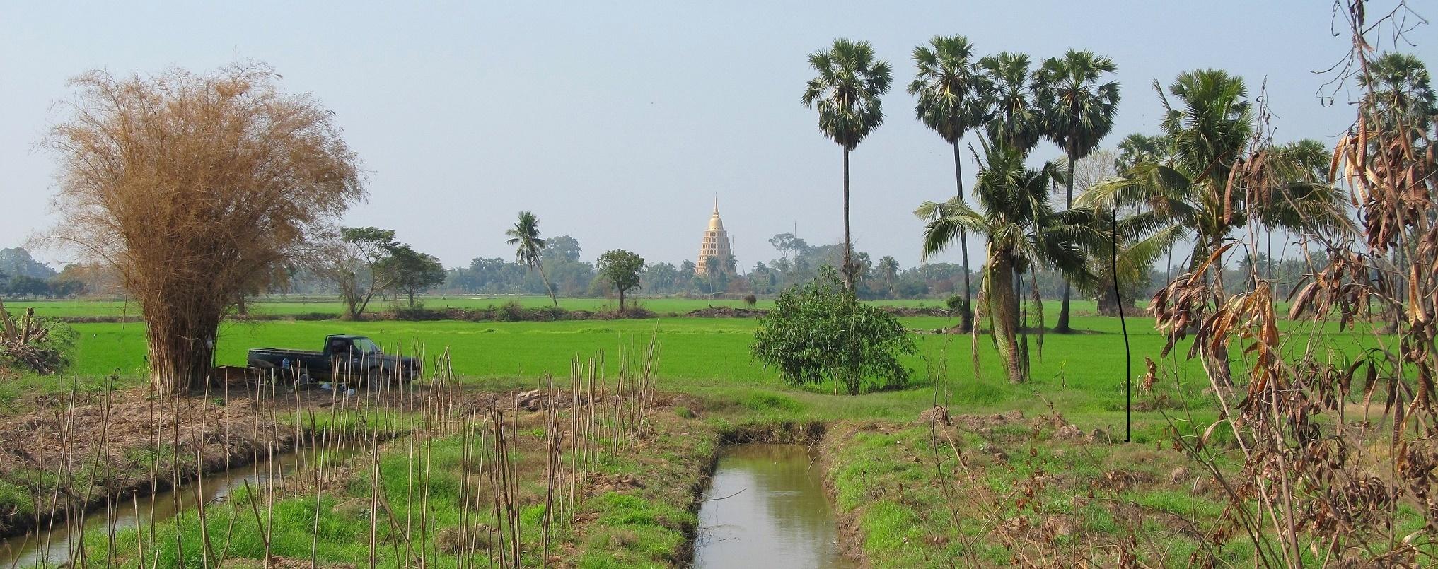 Wat Tha It v rýžovém poli - Thajsko