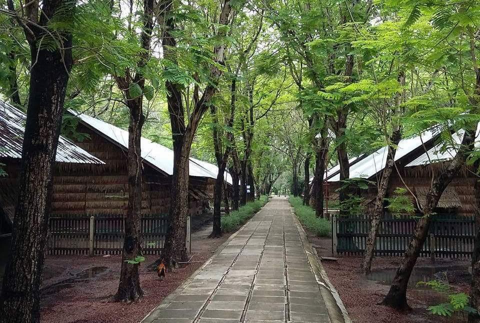 Wat Phra Dhammakaya - upravený a fungující areál