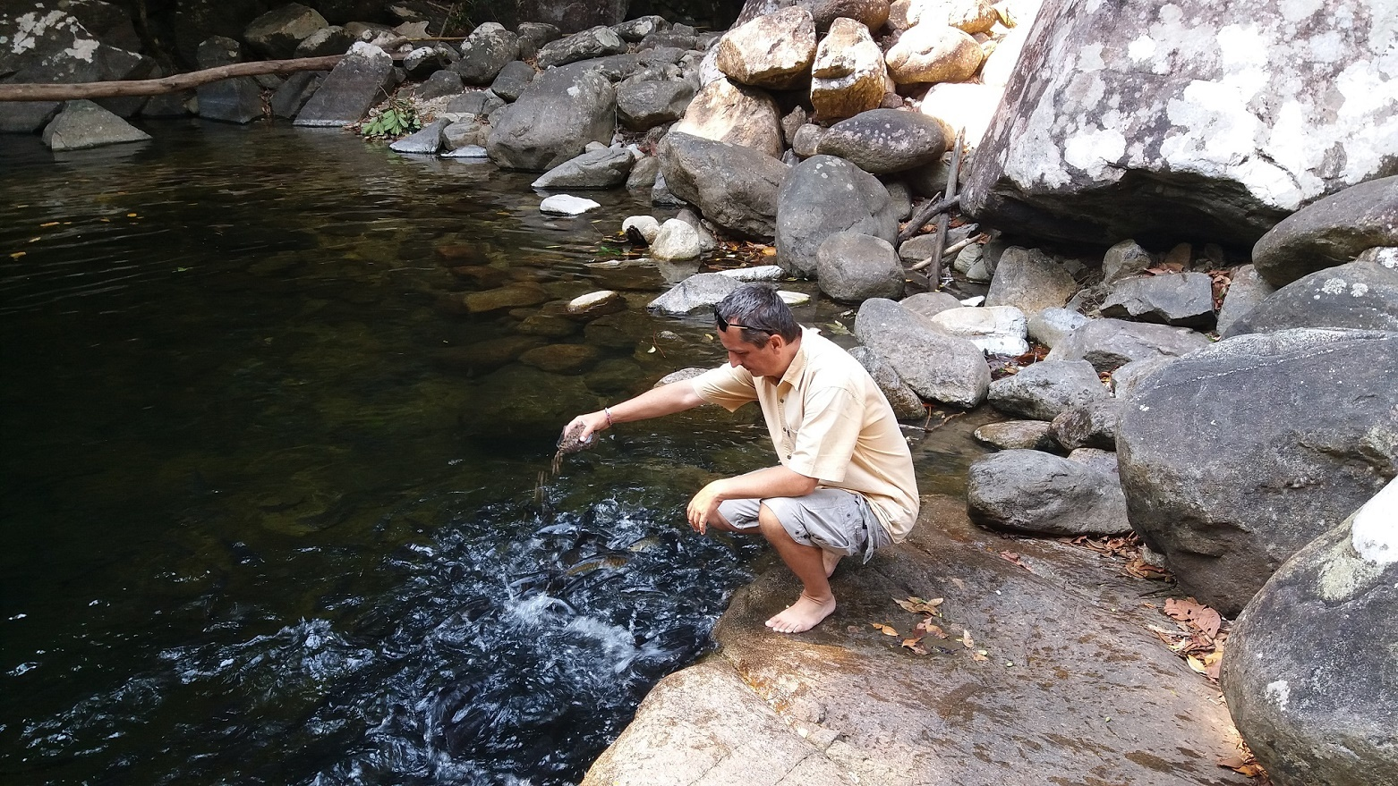 Parmouni Kambodžští a rybí granule - Thajsko