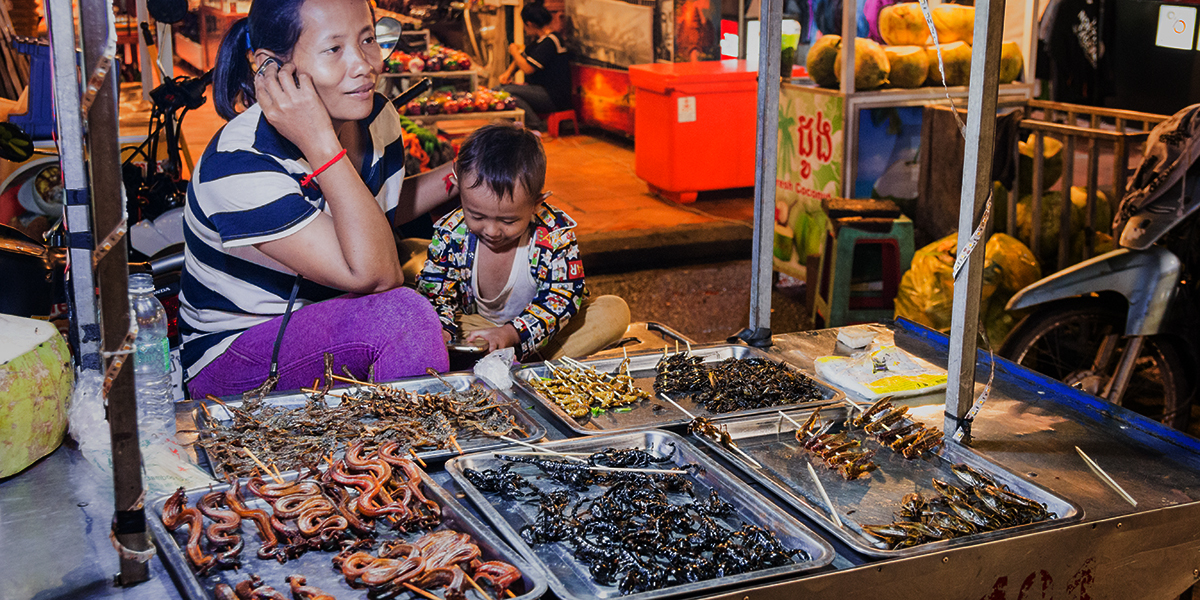 Stánek s hmyzem a hadíky, Kambodža Siem Reap