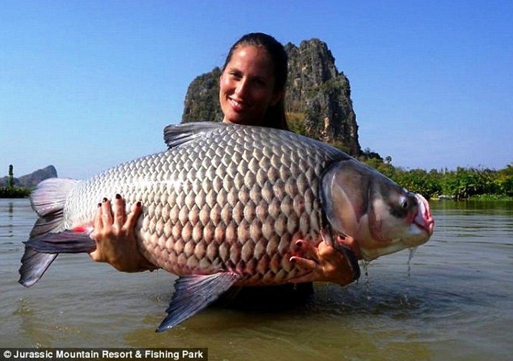 Jurassic Fishing Park - Thajsko