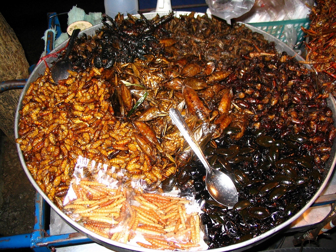 Klasická nabídka smaženého hmyzu Thajsko 2005