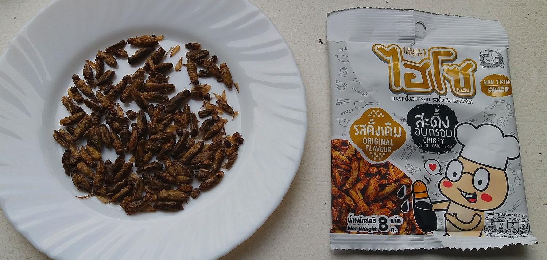 Smažený hmyz nová doba