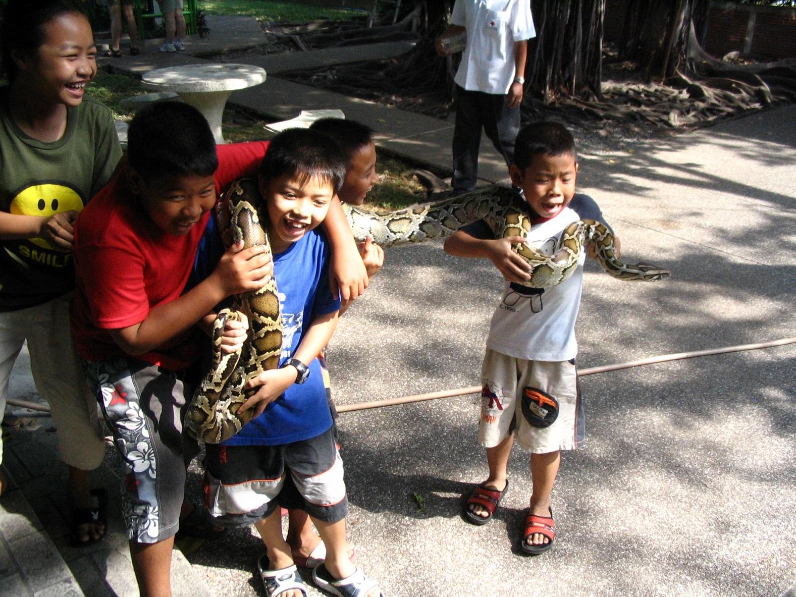 Hadí farma Bangkok 2006